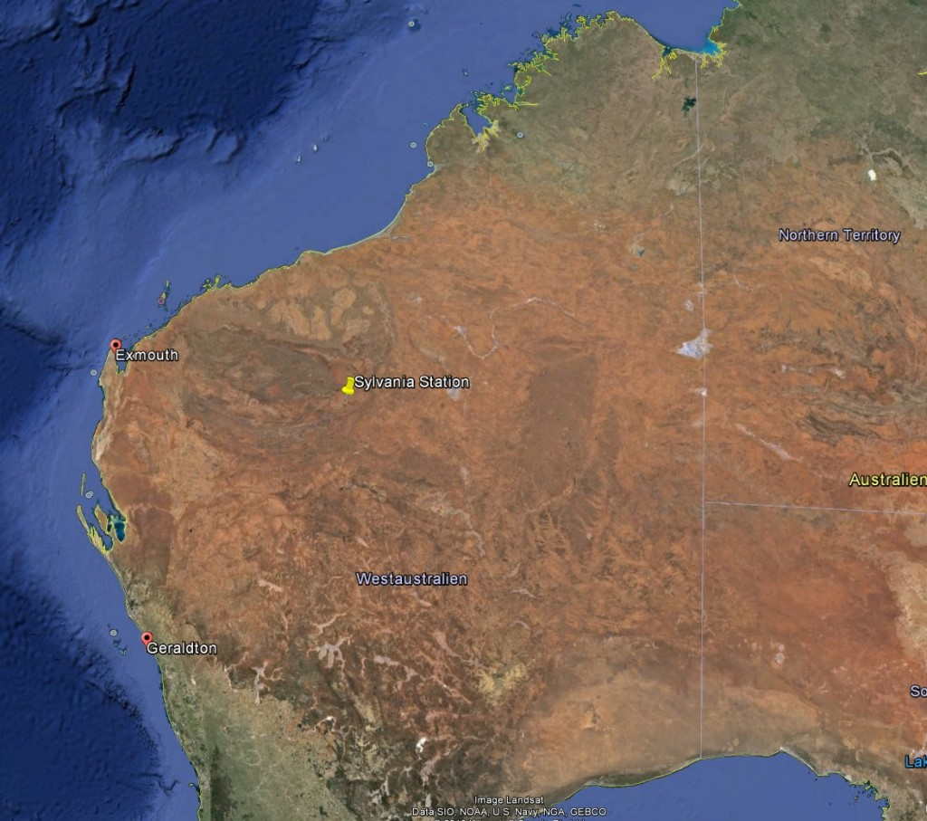 Sylvania is about a 1000km North East of Geraldton